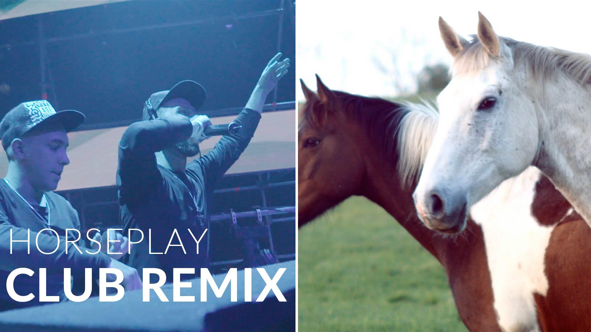 Horseplay Blackrock Club remix